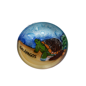 Handmade Galapagos Turtle Ring glass Plate